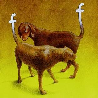 facebook dogs