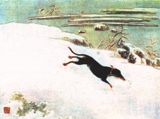 Animal-Dog-Dog-chasing-rabbit-in-snow-Asian