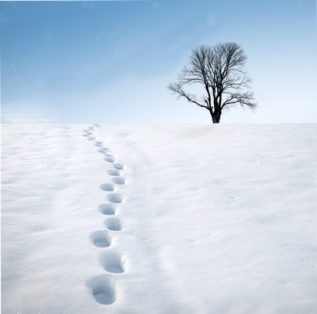 stock-photo-footprints-in-deep-snow-and-a-tree-on-horizon-winter-landscape-45808432