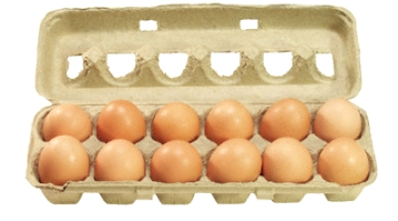 Carton of eggs. one dozen