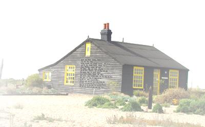 beach shack trans