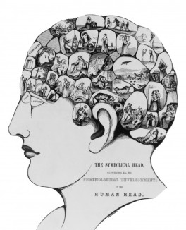 symbolical head