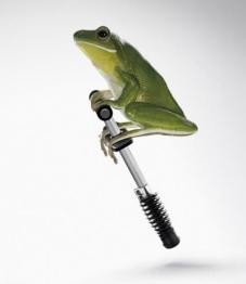 frog pogo stick