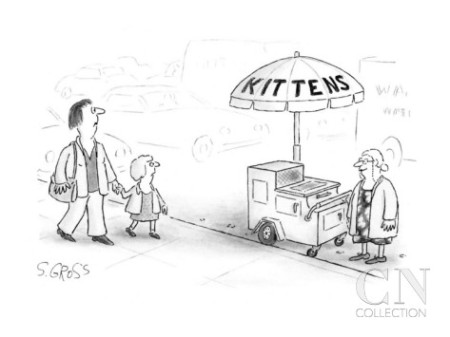 cart with kitten sign cartoonjpg