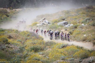 dusty road with cyclysts