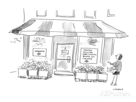 fruit market cartoon
