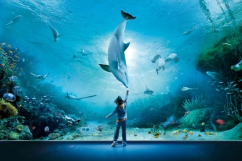 largest-aquariums-in-the-world
