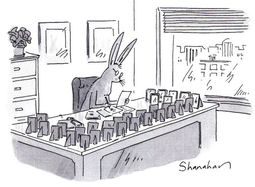 Bunny executive's desk cartoon