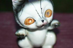 creepy kitten