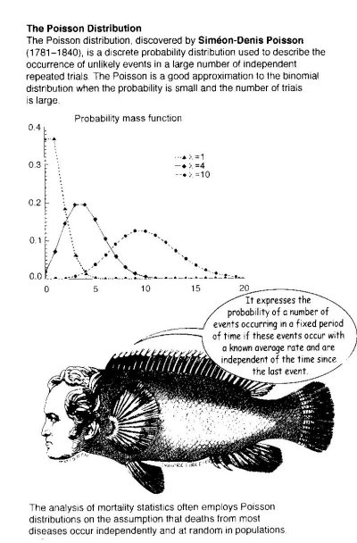 cartoon-fish-poisson-distribution