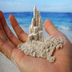 sand-castle-palm