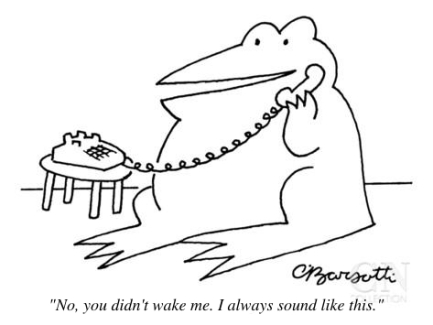 cartoon-frog-on-phone