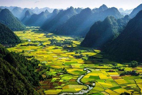 lush-landscape-vietnam