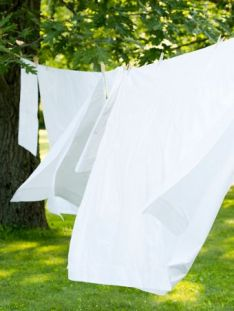 sheets-on-clothesline