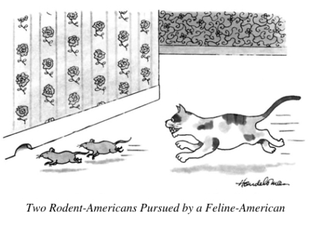 cartoon feline american