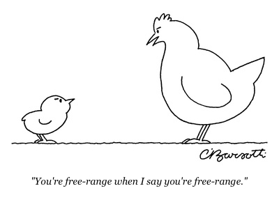 cartoon free range