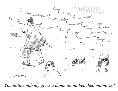 cartoon beached minnows