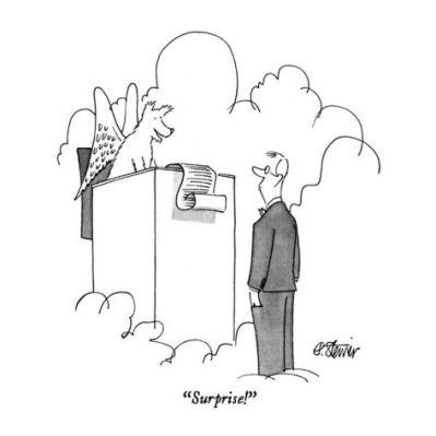 cartoon surpise dog in heaven