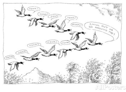 cartoon geese honking