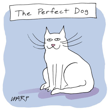 cartoon perfect dog