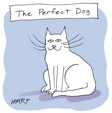 cartoon perfect dog