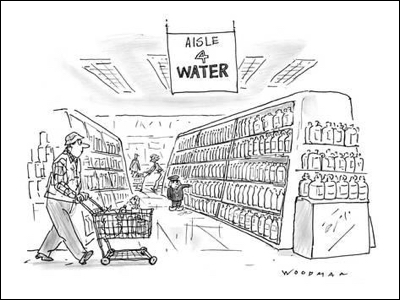 cartoon bill-woodman-little-dutch-boy-at-supermarket-holds-his-finger-against-a-bottle-in-the-new-yorker-cartoon_a-G-9191008-8419447
