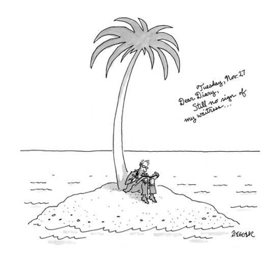 cartoon man-on-deserted-island-writes-tuesday-nov-27-dear-diary-still-no-si-new-yorker-cartoon_a-l-9168868-8419449