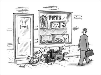 cartoon pets smoking