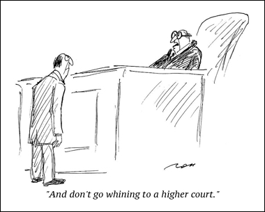 cartoon higher court