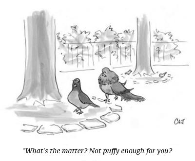cartoon not puffy enough