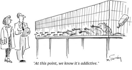 cartoon addicted rats