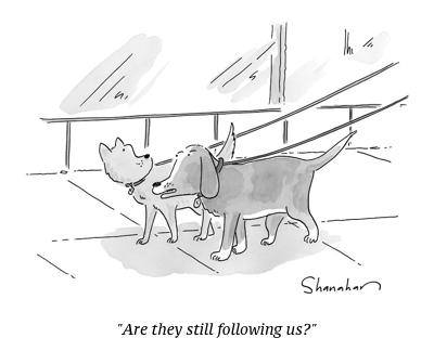 cartoon dog following