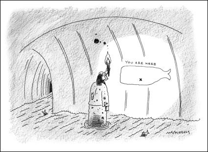cartoon whale interior