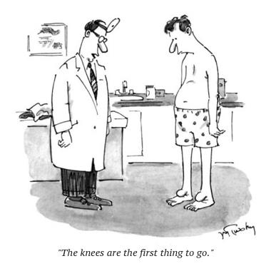 cartoon doc knees
