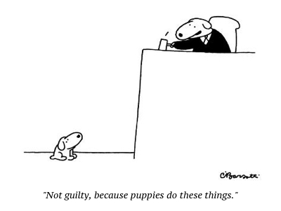 cartoon not guilty