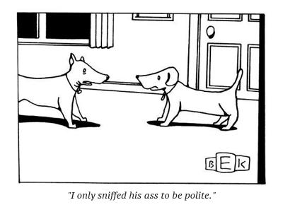 cartoon dog sniff