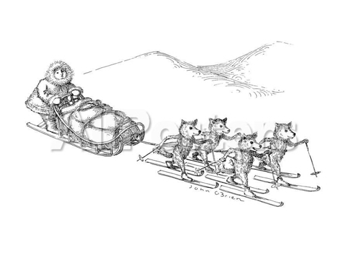 cartoon dog sled
